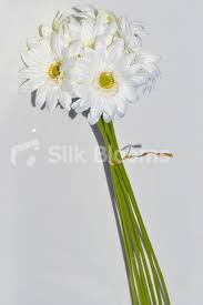 Long Stem Flowers Shop White Silk Gerbera Bunch Of Long Floral Stems Artificial