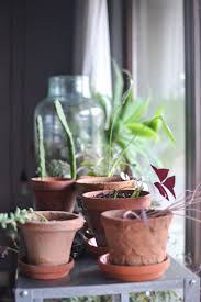 Zu Besuch Bei Igor Happy Interior Blog Contemporary 12839 Best Urban Jungle Bloggers Images On Pinterest Succulents