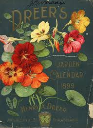 vintage seed packets vintage packaging flower seed packets from the 1800s the