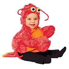 infant boy costumes lobster baby costume ebay