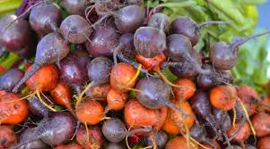Fall Root Vegetables - 4 vegetables you can plant now for a fall harvest treehugger
