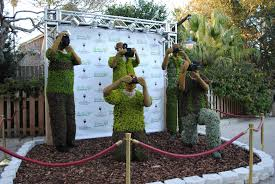 What Is A Topiary Behind The Thrills Putting The U201cgardens U201d Back In Busch Gardens