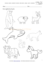 animals worksheet activity sheet color 2