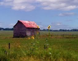 Kansas landscapes images Kansas landscape photograph by steve karol jpg