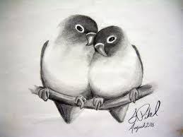simple pencil sketches of love birds drawing of sketch