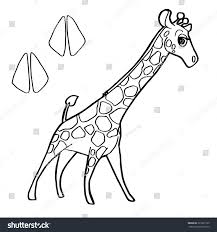 paw print giraffe coloring page vector stock vector 323281169
