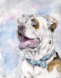 american bulldog colors of k9s by ebonytigress on deviantart