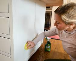 Non Toxic Kitchen Cabinets Kitchen Spring Cleaning Essentials The Chronicles Of Home