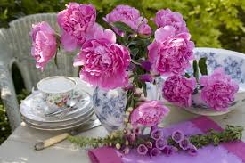 100 type of flowers names and pictures 20 best perennial