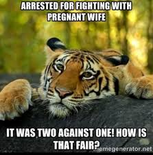 Funny Wife Memes - arrested for fighting with pregnant wife funny tiger meme picture