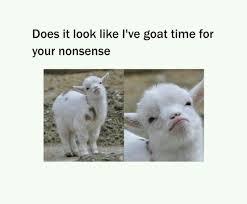 Meme Pun - the best funny meme dank goat pun baa memes memedroid