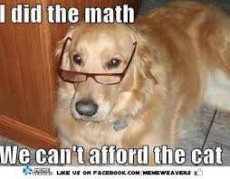 Dog With Glasses Meme - meme weavers on twitter his calculations are always right math
