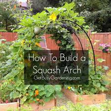How To Build A Trellis How To Build A Squash Arch Gardens Garden Ideas And Yards