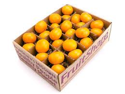 organic fruit delivery satsumas satsuma mandarins organic fruit delivery fruitshare