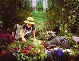 botanical sts a beautiful flower show linnea in monet s garden