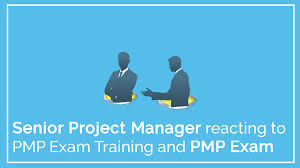 step by step easy to understand pmp exam training program