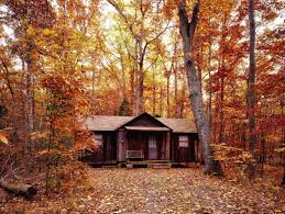 forest house free picture trees woods autumn leaves beautiful color