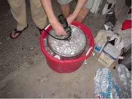 how much is a keg of bud light at walmart 20 newborn opossums can fit into a tablespoon in how much is a keg