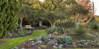 New Zealand Botanical Gardens Auckland Botanic Gardens Mr T Photography