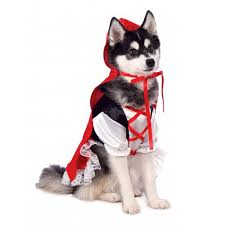 pet costume halloween rubie u0027s red riding hood dog costume with same day shipping baxterboo