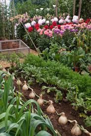 Westwood Flower Garden - best westwood flower garden westwood flower garden florists