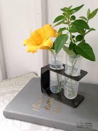 Test Tube Flower Vases Diy Test Tube Vase A Few Shortcuts