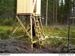 Deer Blind Elevator Brackets Vilttorn Hunting Tower Youtube