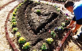 garden design garden design with when to plant spring bulbs
