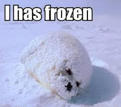 Freezing Cold Meme - kylie s blog its cold there s snow