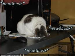 Head Desk Meme - mommy what do all those words mean i don t know honey by