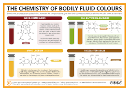 colour of 2017 compound interest the chemistry of the colours of bodily fluids