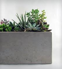 rectangular concrete planter home decor u0026 lighting roughfusion