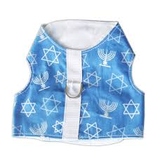 hanukkah vest hanukkah harness vest or tiny and small breed dogs