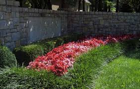 Kansas City Botanical Gardens by Kansas City Commercial Landscaping Professionals Rosehill Gardens
