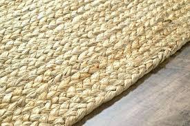 Wool Sisal Area Rugs Sisal Wool Rug Tapinfluence Co