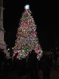 Saluda Shoals Lights Holiday Fun Across The Palmetto State The Midlands South