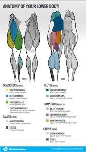 Sports Massage Business Cards Image Result For Sport Massage Business Card Canvas Prints