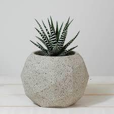 Planter Pot Geometric Sphere Planter Pot By Jeometric Notonthehighstreet Com