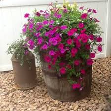 wildly whimsical barrel planter ideas barrels planters and fountain