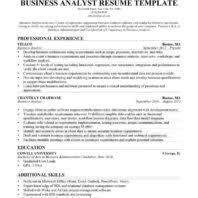 It Business Analyst Resume Examples by Attractive Strongly Preferred Business Analyst Resume With Mary A