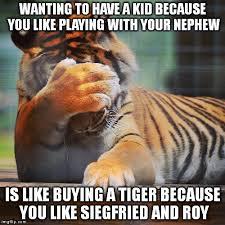 Tiger Meme - facepalm tiger meme generator imgflip