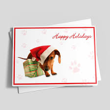 dog christmas cards shop christmas cards with photos and illustrations of dogs