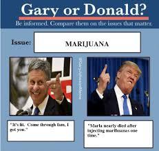 Meme Johnson - gary johnson memes garyjohnsonmeme twitter