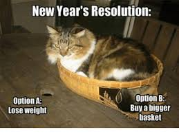 Grumpy Cat New Years Meme - new year s resolution option b option a buy a bigger lose weight