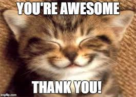 You Are Awesome Meme - awesome thank you meme
