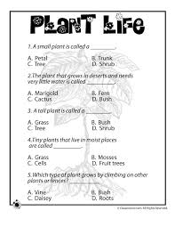 how do plants grow plant life worksheets for kids