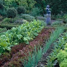 Fall Vegetable Garden Ideas by 101 Best Potager Garden Images On Pinterest Potager Garden