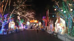 enchanted forest christmas lights santa s enchanted forest picture of santa s enchanted forest
