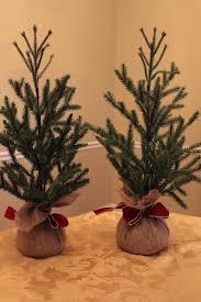 keeping up with the kiddos mini christmas trees