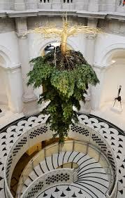 tate britain s tree look photo time